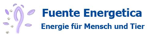 Blog Fuente Energetica